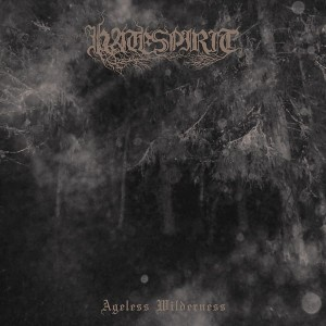 HATESPIRIT - Ageless Wilderness (LP)