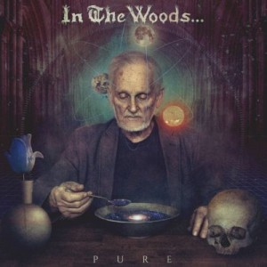 IN THE WOODS… - Pure (DigiCD)