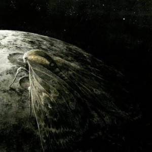AUGRIMMER -  Moth And The Moon  (CD)