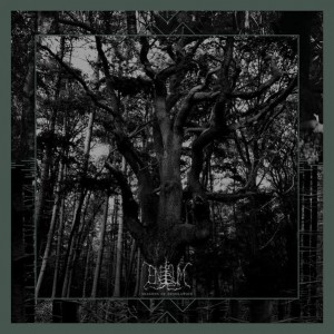 ENISUM - Seasons Of Desolation (2LP)